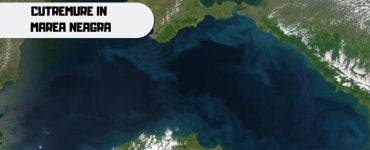 Șapte cutremure, produse în Marea Neagră. Ce spune INFP