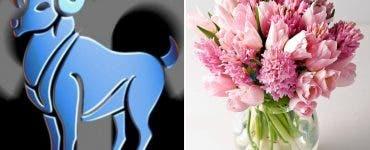 Horoscop floral - află ce floare ți se potrivește în funcție de zodie! Vei fi surprins să afli!