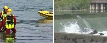 Accident pe fluviul Rin. Un nou bilanț în urma accidentului