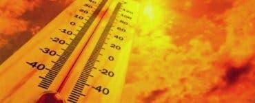 Canicula a topit întreaga Românie. 44 de grade resimțite la Herculane