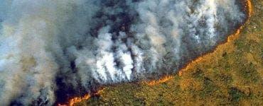 Pădurea Amazonului este distrusă de flăcări. Macron vorbește despre o criză internațională