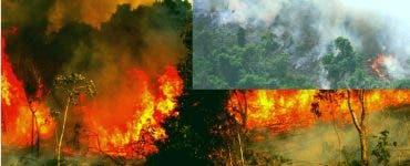 Incendiile au distrus pădurea Amazoniană. Fumul a devenit vizibil din spațiu