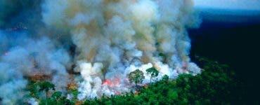 Incendiile din Pădurea Amazoniană. Brazilia accepă ajutorul G7 doar dacă va putea decide cum să-l folosească