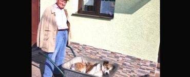 Dragostea pentru animalul său l-a făcut să uite de vârstă. Un bătrân de 80 de ani și-a dus cățelul 8 km cu roaba până la veterinar