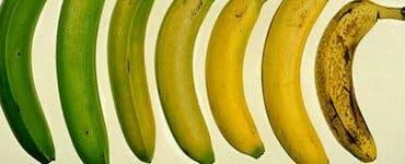 Așa arată banana sănătoasă pentru corpul tău. Știai?