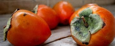 Fructul care face ravagii în România! Adevărul despre Kaki, fructul zeilor