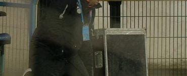 Dan Petrescu, în genunchi la meciul cu Botoșani