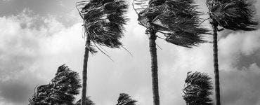 Cod galben de vânt puternic vineri dimineață. Valabil în 27 de judeţe din România