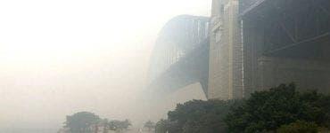 Incendiile din Australia. Norul de fum a ajuns în Chile și Argentina