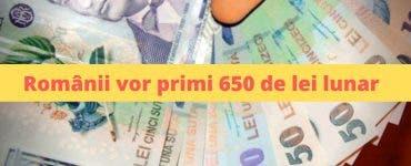 Anunț oficial! Românii vor primi 650 de lei lunar. Care sunt condițiile