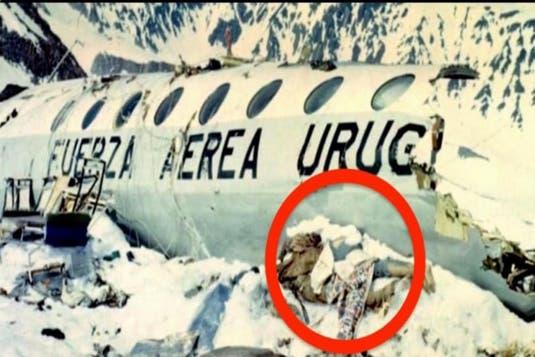 La 72 de zile de la prăbușirea avionului, poliția a descoperit un secret teribil ascuns în munți. După ce toți au aflat întregul adevăr, nu au putut să îI condamne! Ce făcuseră câțiva oameni pentru a supraviețui: