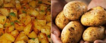 Metoda de păstrare a cartofilor care este periculoasă pentru organismul uman
