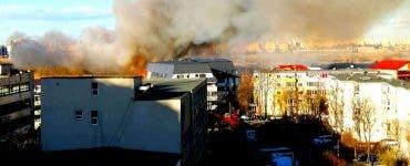 Incendiu devastator în Capitală. Flăcări imense au mistuit vegetația din Delta Văcărești
