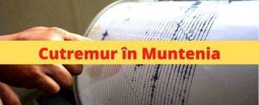 Cutremur în România. Seismul a avut magnitudinea de 3,1 pe scara Richter