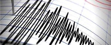 Cutremur în Vrancea, în această dimineață. Ce magnitudine a avut seismul