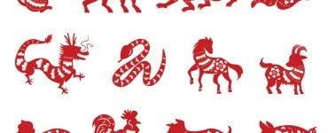 Ce zodie ești în Zodiac Chinezesc. Horoscop chinezesc pentru fiecare