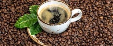 Cum să faci cea mai bună cafea. 10 trucuri simple pentru amatorii de gusturi fine