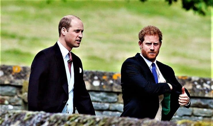 Prinții William și Harry