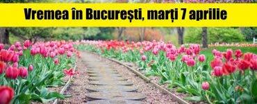 Vremea în București, marți 7 aprilie. ANM anunță vreme caldă