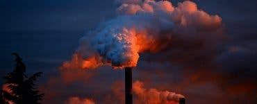 Ce înseamnă poluare. Care sunt parametrii în care ar trebui să găsim un aer de calitate