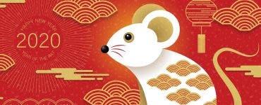 Horoscop chinezesc, luna iunie. Zodia care își va schimba total viața