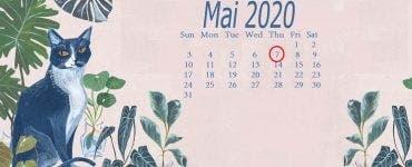 Numerologie. 7 mai