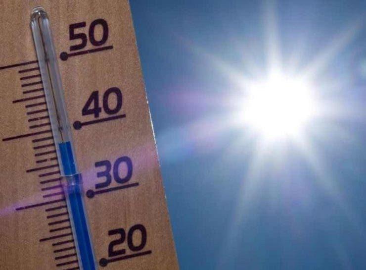 Cea mai caldă vară
