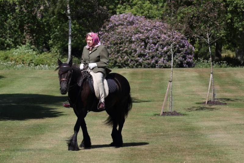 Apariția Reginei MArii Britanii pe cal