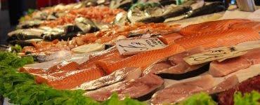 Care sunt pestii fără oase O scurtă clasificare a acestora