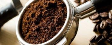 curiozitati cafea