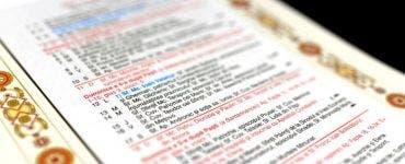 Care este diferenţa dintre sărbătoarea cu cruce neagră şi cea cu cruce roşie