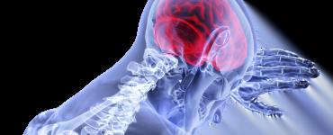 Creier activ dupa moarte