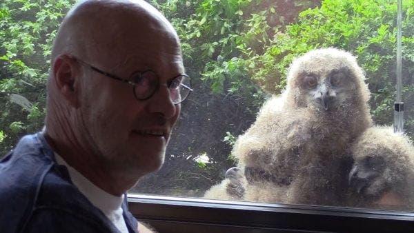 Un bărbat a găsit ceva neașteptat în timp ce privea către fereastra sa de la etajul trei.Cine sunt vecinii curioși ce-l spionau pe olandez