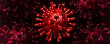 coronavirus Liban