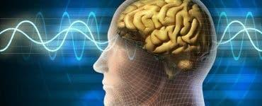 Creier uman conectat la computer