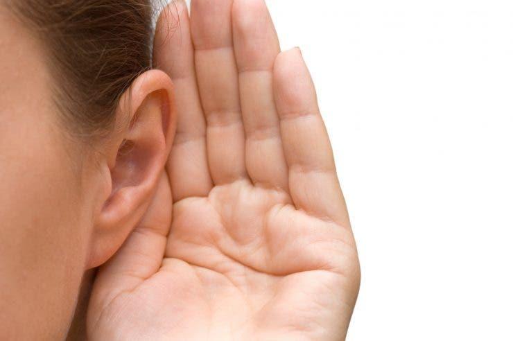 Degradarea auzului