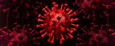 Un nou virus care se transmite de la om la om