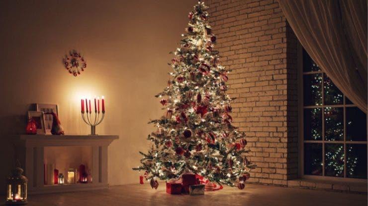 VIDEO! Ce a găsit o familie din Australia în pomul de Crăciun.