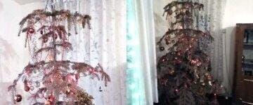 O familie din Alba ține în casă un brad natural împodobit de 14 ani! Motivul este emoționant