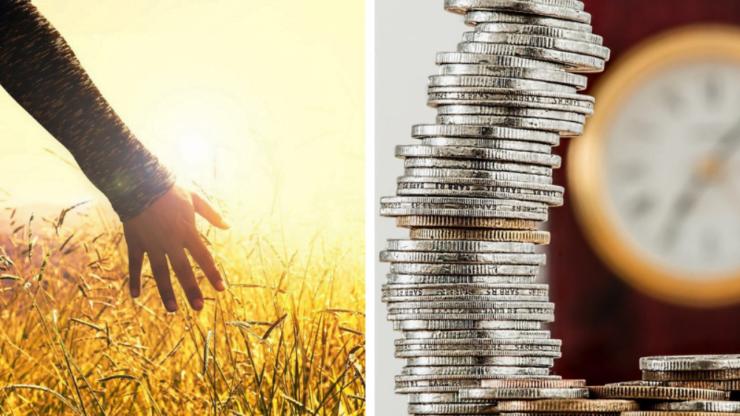 Plățile subvențiilor Apia în 2021