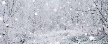 Prognoza meteo ANM 20 ianuarie 2021