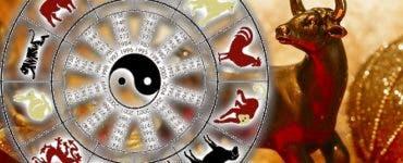 zodia Bivolului de Metal în horoscopul chinezesc