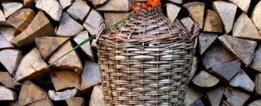 _Un român a plantat o sămânță într-o damigeană