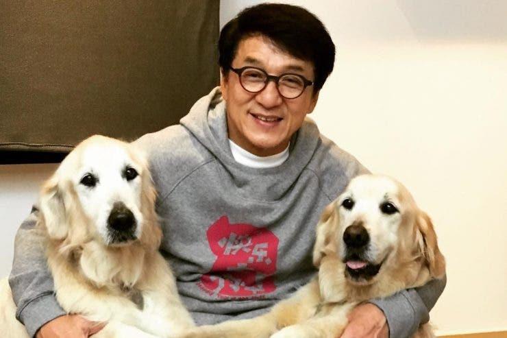 Jackie Chan, Jackie Chan avere, Hong Kong