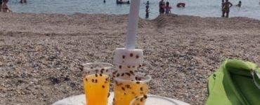 """Imagini incredibile de la Mamaia! Ce au găsit turiștii pe plajă. """"Trebuia să iasă de vreo lună"""""""