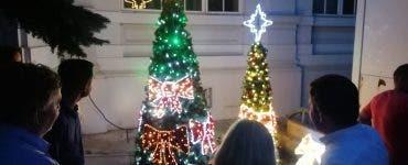 În plin cod galben de caniculă, Primăria Arad se pregătește deja pentru Crăciun! Au început deja să cumpere brazi