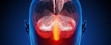 Ce este ceața creierului? Cum se manifestă acest nou efect al infectării cu Covid-19